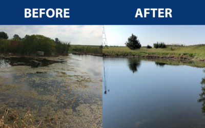 Healthy Ponds Tackles Submerged Weed – A Testimonial