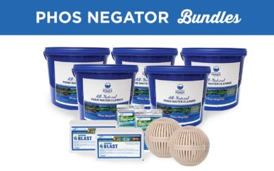 Reduce Phosphorus with Phos Negator Bundle Kits
