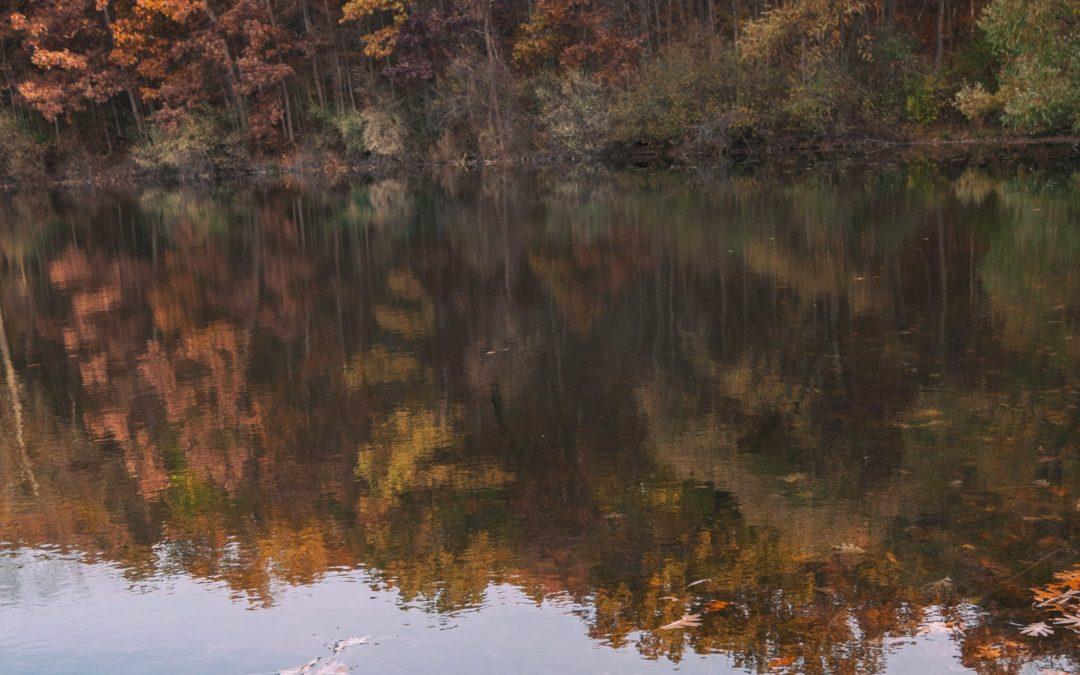Fall Pond Prep
