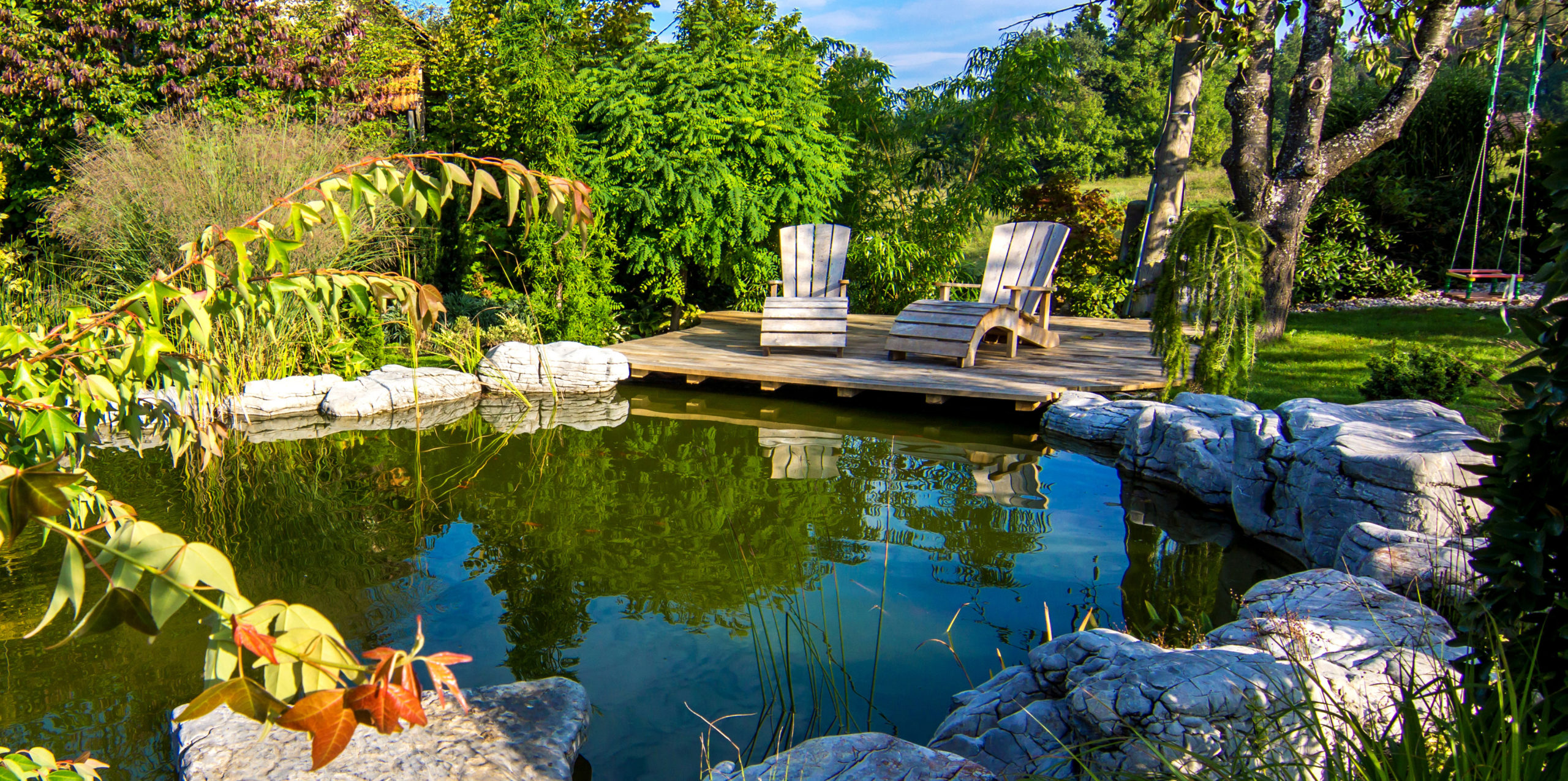 Clean Pond with Water Treatment