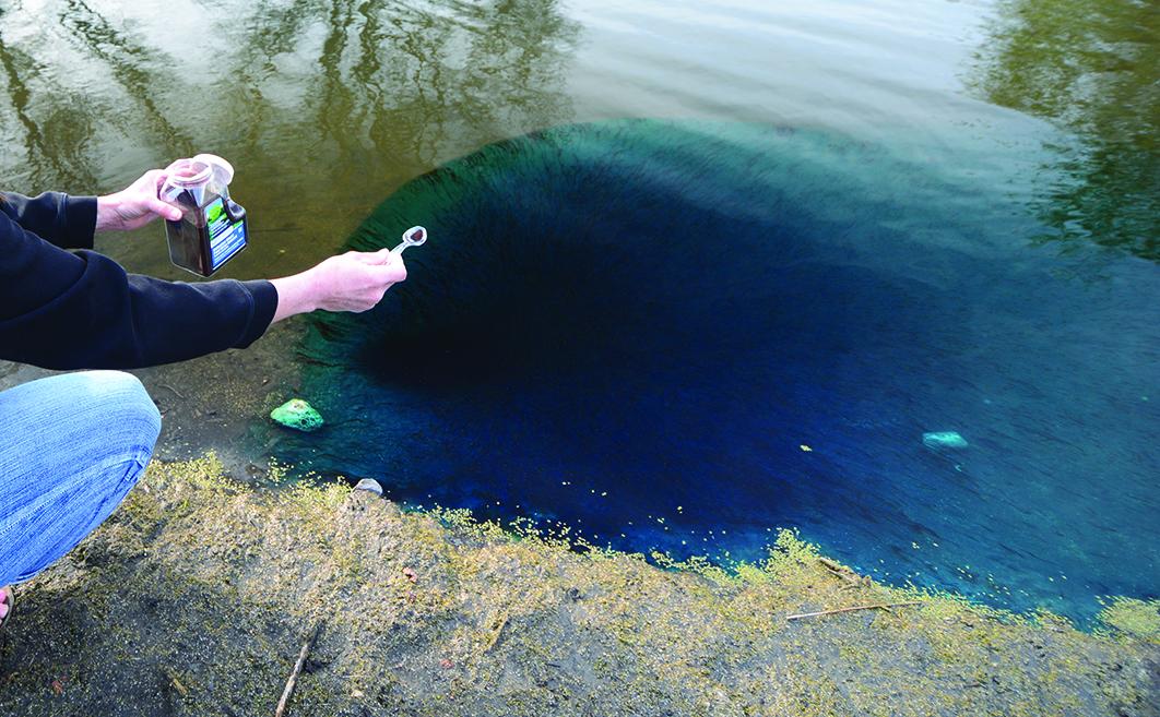 natural blast throw into pond